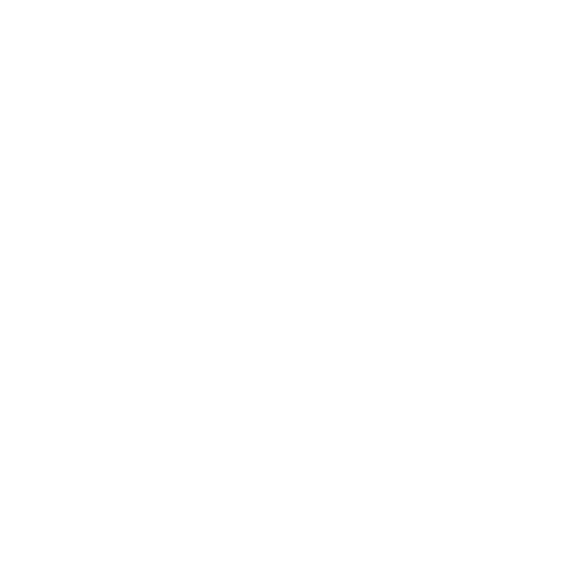 Denis Optique